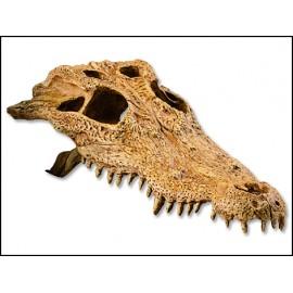 Hagen Exo Terra Crocodile Skull krokodília lebka
