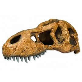 Hagen Exo Terra T-Rex Skull dinosauria lebka