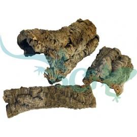 Korková kôra 1-1,2kg