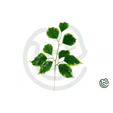 Umelá Rastlina Lipa Zelená 55cm