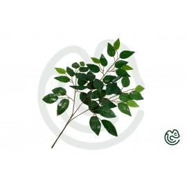 Umelá Rastlina Fikus Zelená 60cm