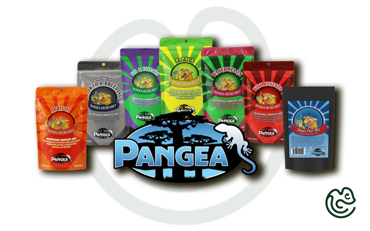 Pangea Gecko diet